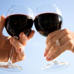 wijnkoeler-duo